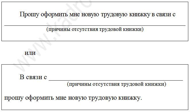 zayavleniya-po-voprosam-svyazannym-s-trudovymi-knizhkami_1.png